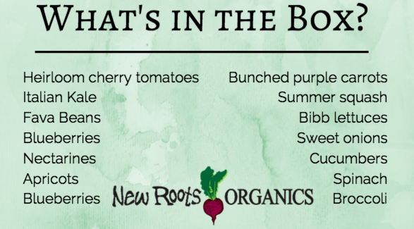 what in this weeks fresh organic local produce by New Roots organics, washington farms' vegetables and fruit