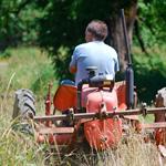 New Roots Organics Farms