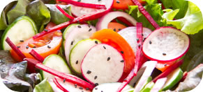 Red Leaf, Radish, Cucumber and Pine Nut Salad