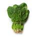 Image for Spinach, Local