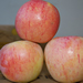Image for Apples, Ambrosia