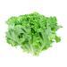 Image for Lettuce, Green