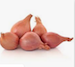 Image for Shallots, local