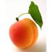Image for Apricots